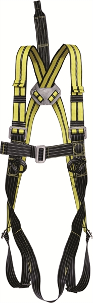 2 Point Atex Full Body Harness